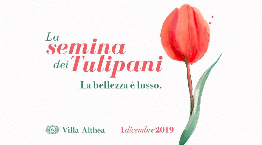 Atelier Carol alla Semina dei Tulipani: prenotati e partecipa anche tu all'evento e ritira il tuo regalo!